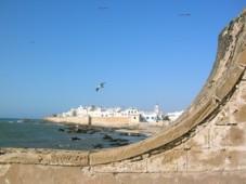 maroco1.jpg