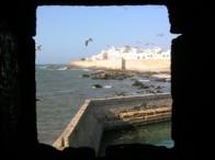 maroco3.jpg